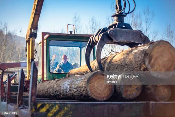 Crane unloading logs