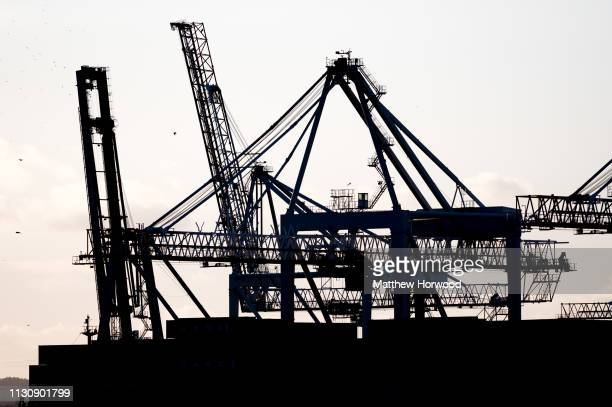 Cranes and freight transportation equipment are seen silhouetted on a container ship at the Port of Southampton on February 10 2019 in Southampton...