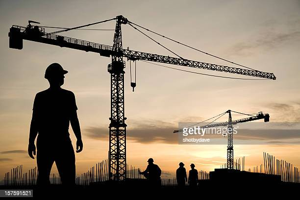 cranes at dawn - crane construction machinery stock pictures, royalty-free photos & images