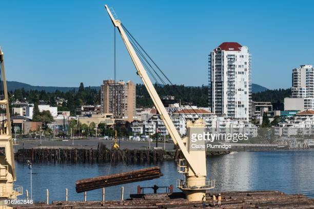 cranes loading logs onto a ship in victoria, british columbia, canada. - claire plumridge stock pictures, royalty-free photos & images