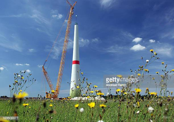 Cranes stand next to a row of wind turbine masts under construction on August 20, 2010 near Linthe, Germany. Germany is investing heavily in...