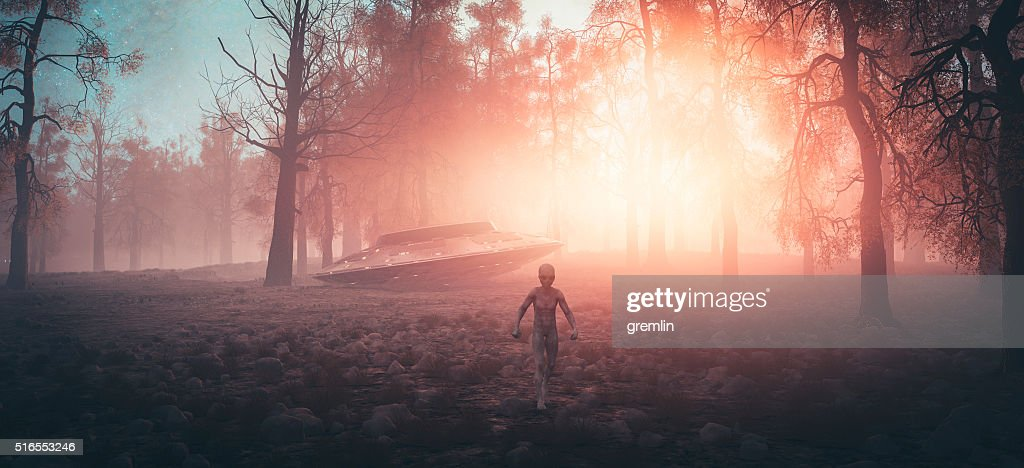 Crash landed UFO with alien walking in the forest : Stock Photo