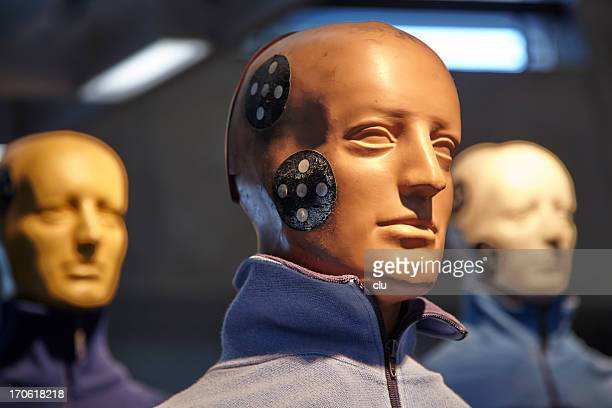 Crash test dummy heads