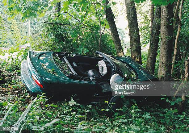 Crashed Vehicle in Trees