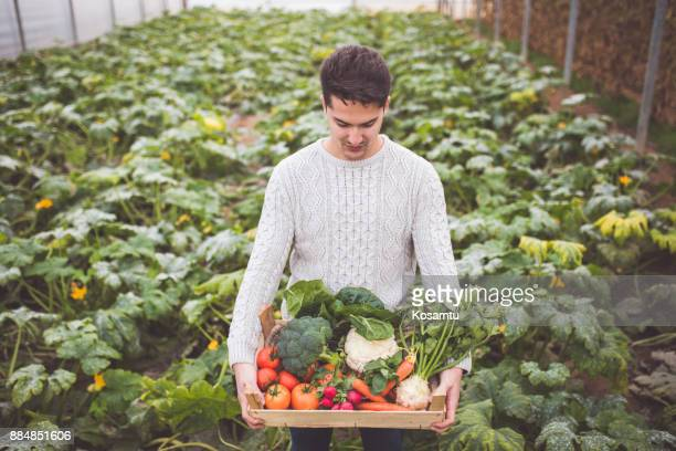 Crate Of Fresh Organic Veggies