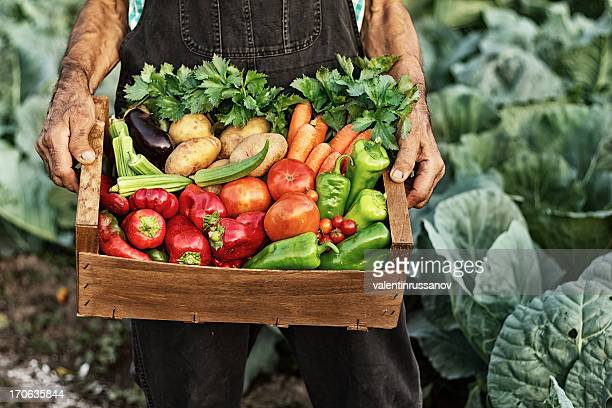 Crate with vegetables
