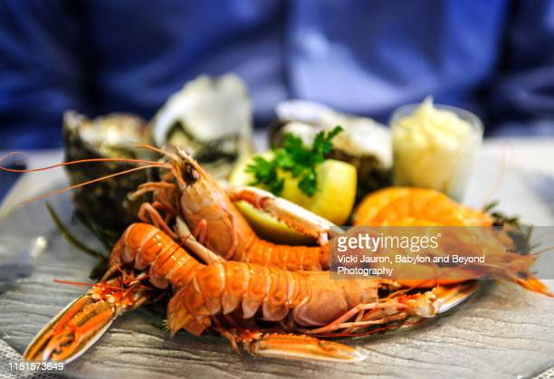 crawfish and shrimp seafood platter against blue background - crayfish seafood stock pictures, royalty-free photos & images