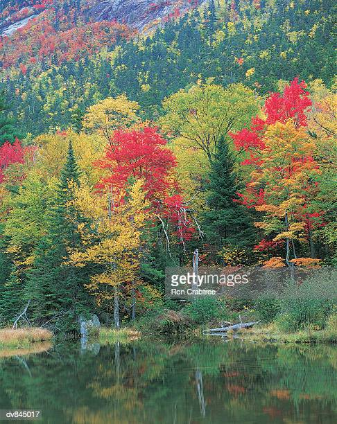 crawford notch, new hampshire, usa - crawford notch stock pictures, royalty-free photos & images