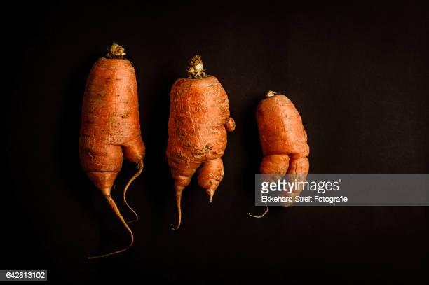 crazy carrots (1): dancers