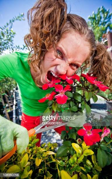 crazy jardinier - jardinier humour photos et images de collection