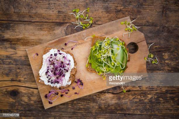 Cream cheese sandwich and sandwich with avocado cream garnished with radish sprouts