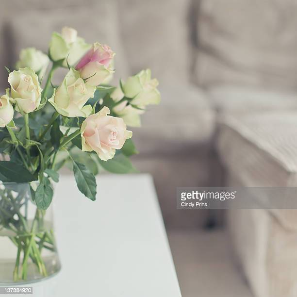 Cream pink roses in glass vase on white table