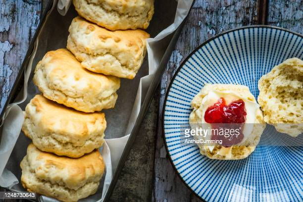 cream tea with freshly baked scones clotted cream and jam - looking down stock pictures, royalty-free photos & images