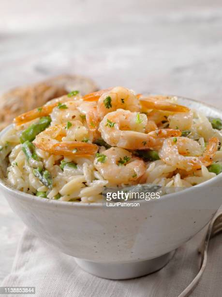 creamy parmesan orzo with shrimp and asparagus - parmesan stock pictures, royalty-free photos & images