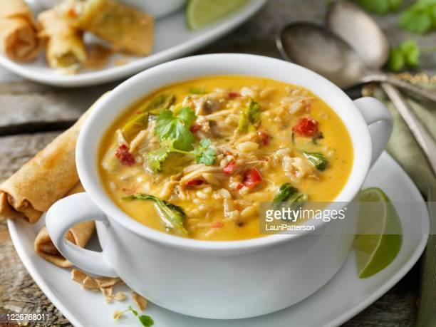 creme tailandês, frango e sopa de arroz com rolinhos de primavera - chicken soup - fotografias e filmes do acervo