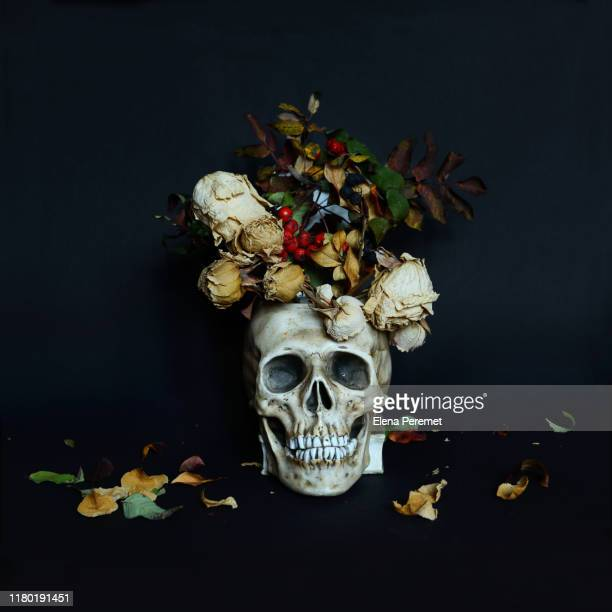 creative floral layout with skull and flowers on black background. - dead stock pictures, royalty-free photos & images