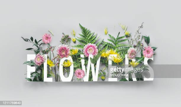 creative flowers concept with word flowers - nature alphabet letters stock pictures, royalty-free photos & images