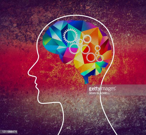 creative mind power - cerebrum stock pictures, royalty-free photos & images