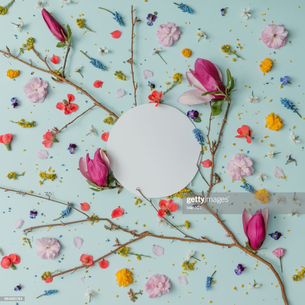 Creative Pattern Made Of Colorful Spring Flowers With Copy Space