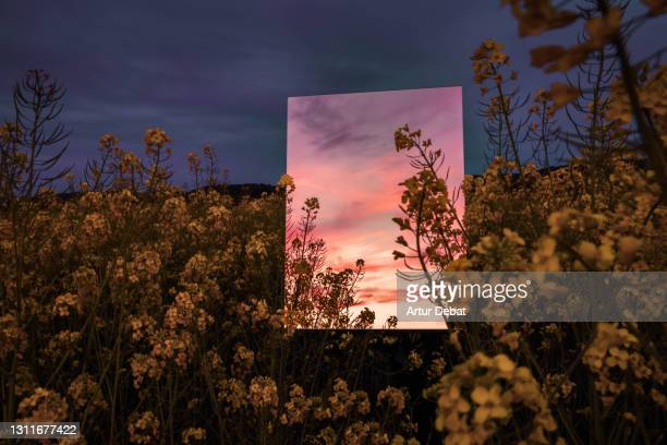 creative picture of square mirror reflecting dramatic sunset landscape in the nature. - ideas stock pictures, royalty-free photos & images