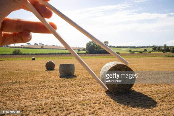 creative sushi picture with round straw bales in the countryside. - optical illusion stock pictures, royalty-free photos & images