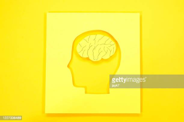creativity - brain  stock pictures, royalty-free photos & images