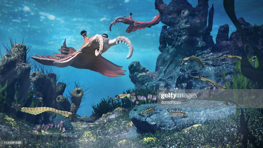 creatures of the Cambrian period, underwater scene with Anomalocaris, Opabinia, Hallucigenia, Pirania and Dinomischus (3d science illustration) : Stock Photo