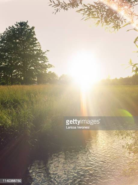 creek at sunset, Bavaria