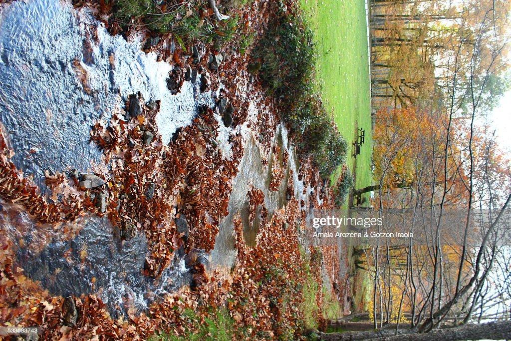 Creek in Leitzalarrea : Foto stock