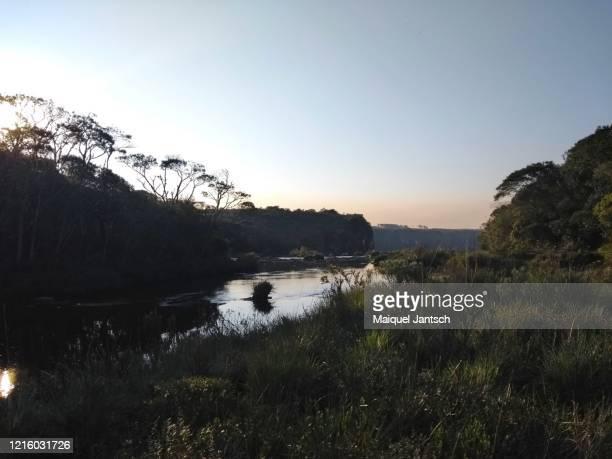 creek near a canyon at the sunset - mata atlantica stock-fotos und bilder