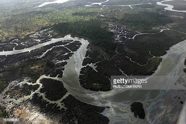 Creeks and vegetations devastated as a result of spills from oil thieves and Shell operational failures in Niger Delta on March 22 2013 Shell...
