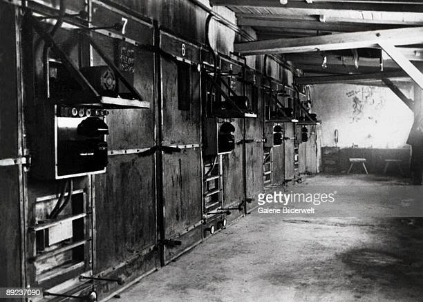 Crematorium III at Auschwitz concentration camp, Poland, January 1945. A freight elevator brought up the bodies from the gas chambers, to be...