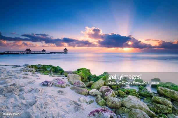 crepuscular - mayan riviera stock photos and pictures
