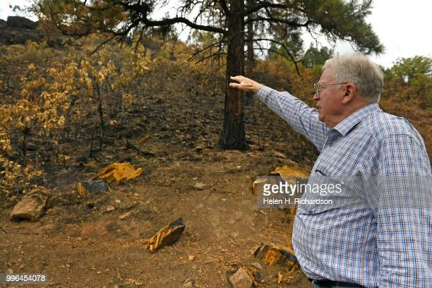 Cres Fleming points to the exact area where he says the 416 fire started on July 10 2018 near Hermosa Colorado Evidence is suggesting that the...