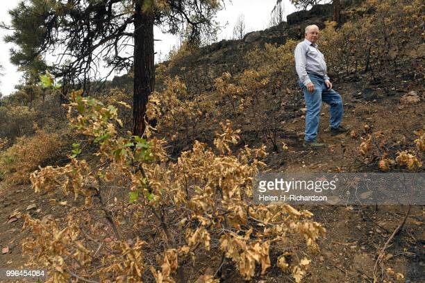 Cres Fleming stands in the exact area where he says the 416 fire started on July 10 2018 near Hermosa Colorado Evidence is suggesting that the...