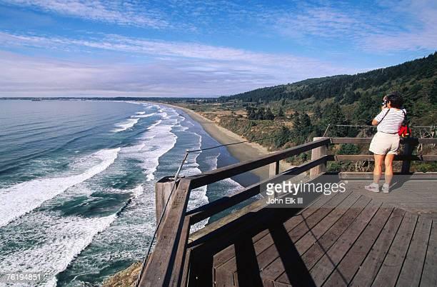 Crescent Beach Overlook, Redwood National Park, California, United States of America, North America