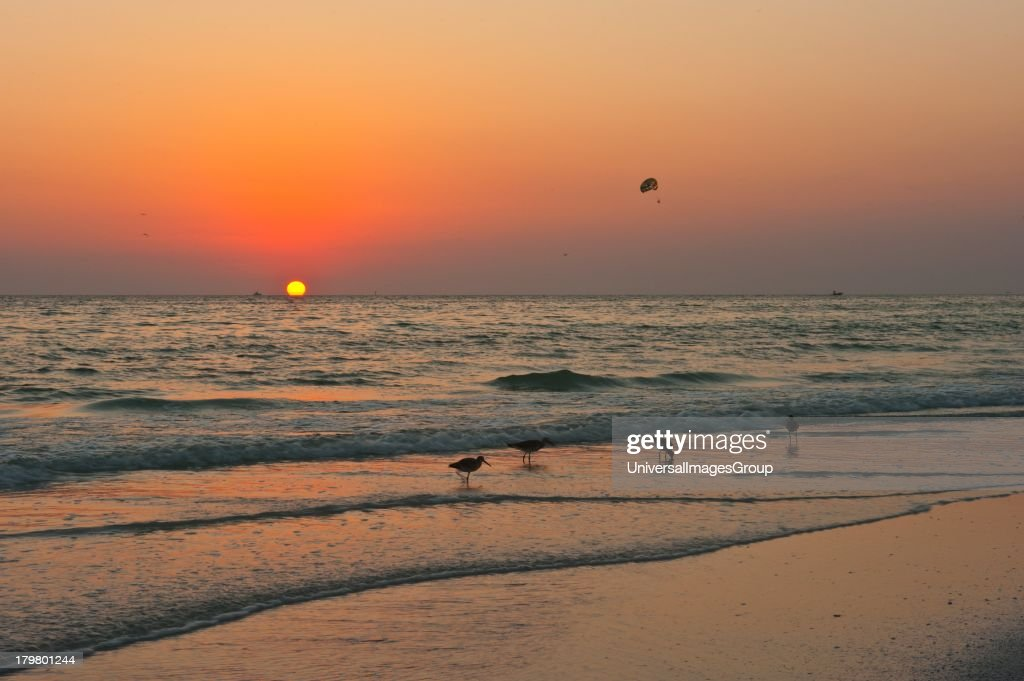 Crescent Beach, Siesta Key, Sarasota, Florida : News Photo