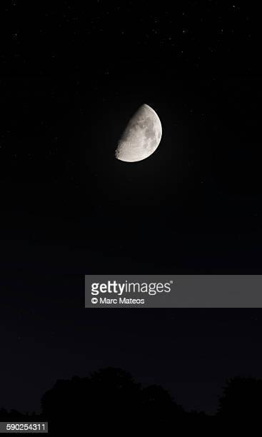 crescent moon - marc mateos fotografías e imágenes de stock
