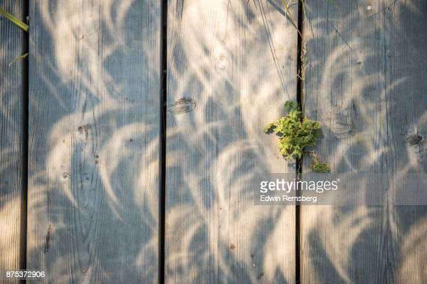 crescent suns - 船のデッキ ストックフォトと画像