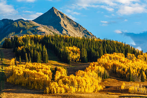 Crested Butte autumn colors at sunset