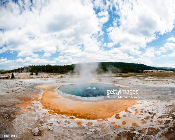Crested Pool, Yellowstone National Park.