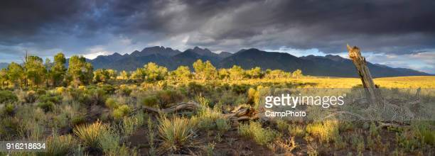 crestone summer panorama - great sand dunes national park stock pictures, royalty-free photos & images