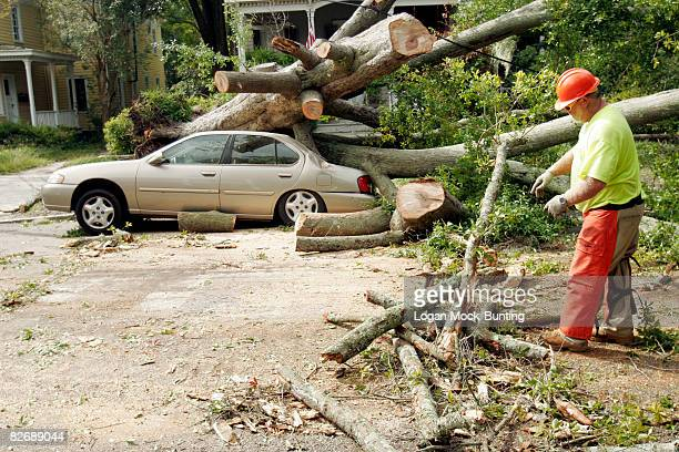 A crew member from North Carolina Department of Transportation removes a pine tree downed by Tropical Storm Hanna September 6 2008 in Wilmington...