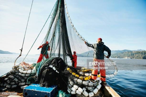 crew members of purse seiner hauling in net while fishing for salmon - fishing industry stock pictures, royalty-free photos & images