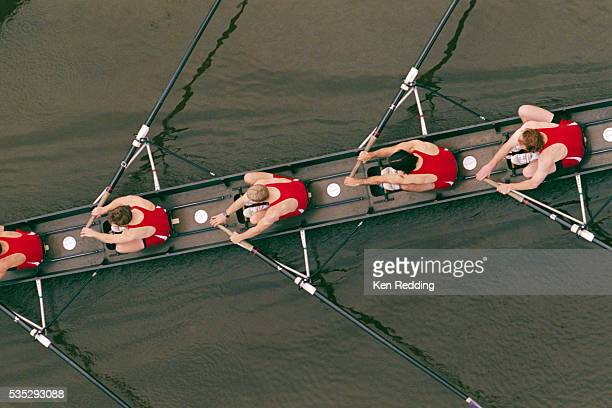 crew members rowing - sports team stock pictures, royalty-free photos & images