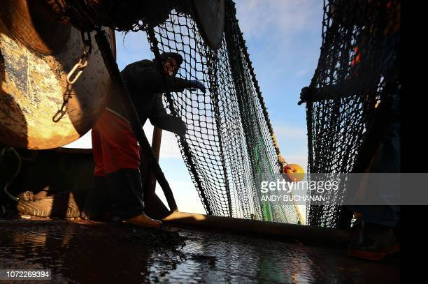 Crewman Gordon Mowbray works fishing for prawns on the fishing trawler 'Scotia Star' in the North Sea off the east coast of Scotland on December 10...
