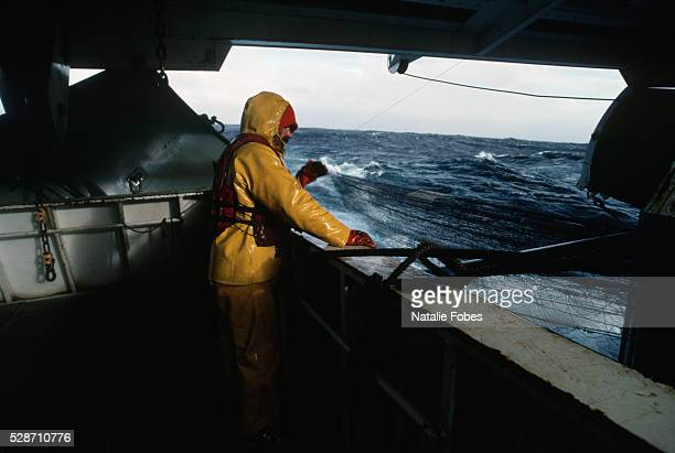 crewman tending to nets on trawler - bering sea stock pictures, royalty-free photos & images