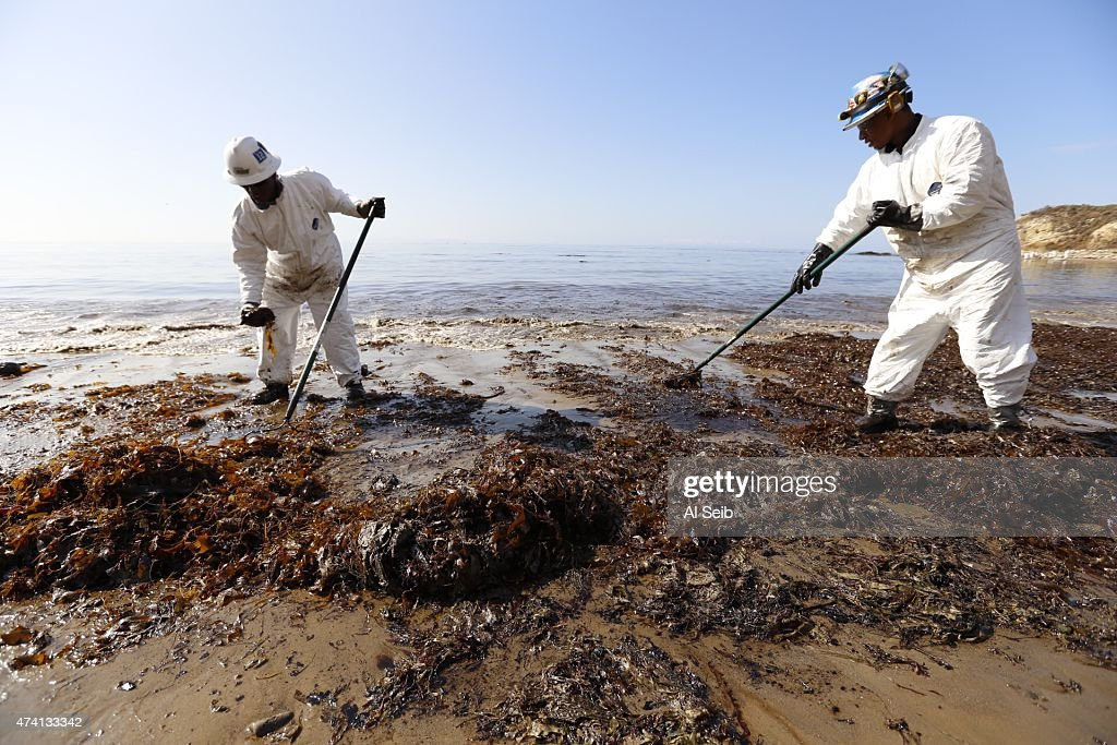 Crews from Patriot Cleanup bag oiled sand and kelp at Refugio State Beach Wednesday morning, May 20, 2015, after a ruptured pipeline near Santa Barbara leaked an estimated 21,000 gallons of crude oil.