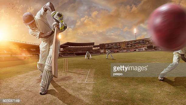 cricket action - cricket stockfoto's en -beelden