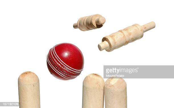 Cricket Ball, Bails and stumps